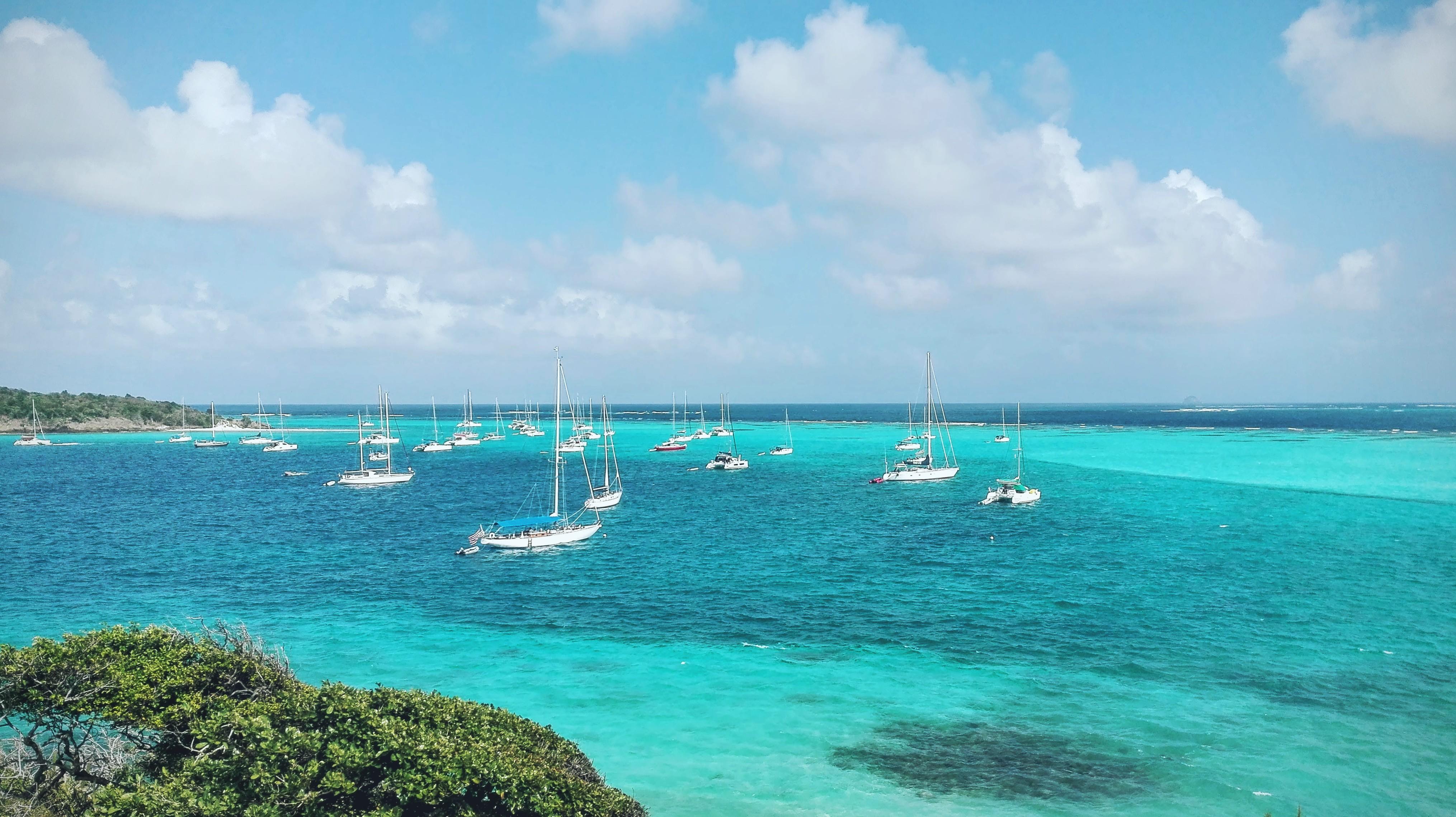 Tobago Cays & Petit Tobac
